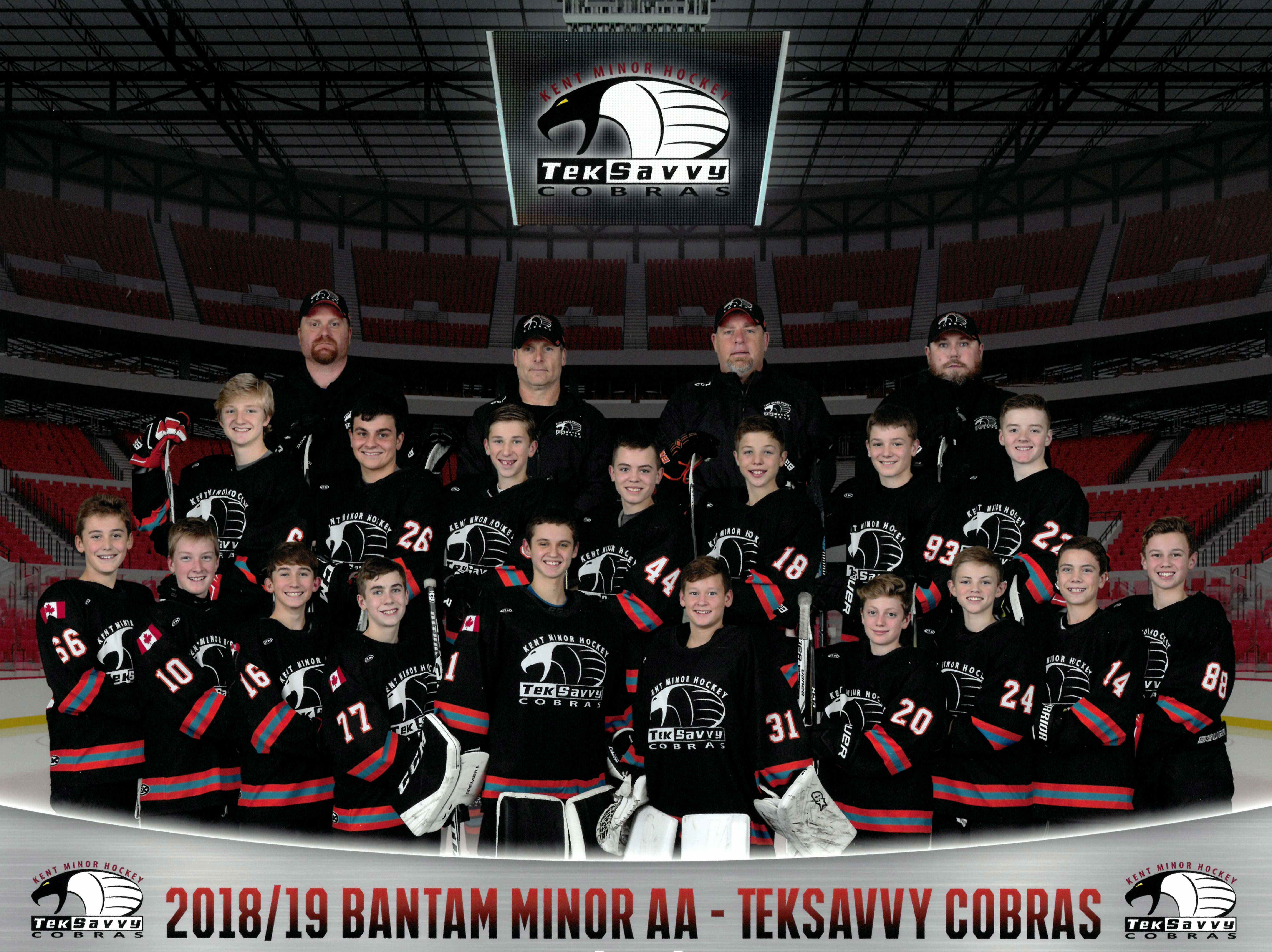 2018/19 Bantam Minor AA TekSavvy Cobras